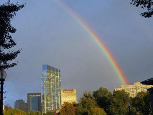 Ritz Rainbow Viviana DeSimone RE